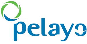 pelayo logo onlecar